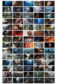 Affiche : L'arbre de la vie