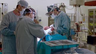 Accès à l'hôpital de greffe d'organes le plus occupé au Canada