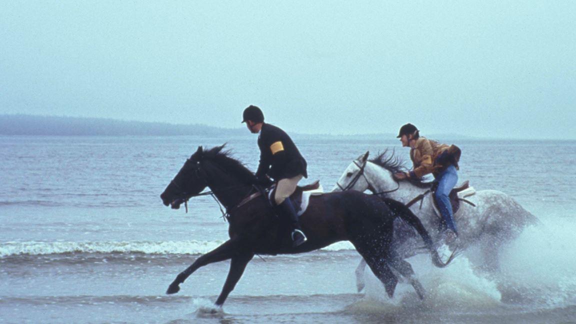 Une seule passion : l'équitation
