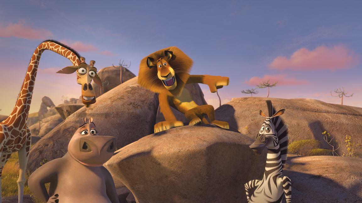 Un lion en manque d'admiratrices!