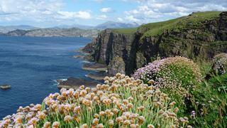 Découvrir les îles écossaises
