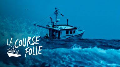 La course folle commence : 325 pêcheurs jettent leurs casiers à la mer!