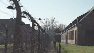 L'accusé numéro 27 au plus grand procès de l'Histoire : la SS toute entière