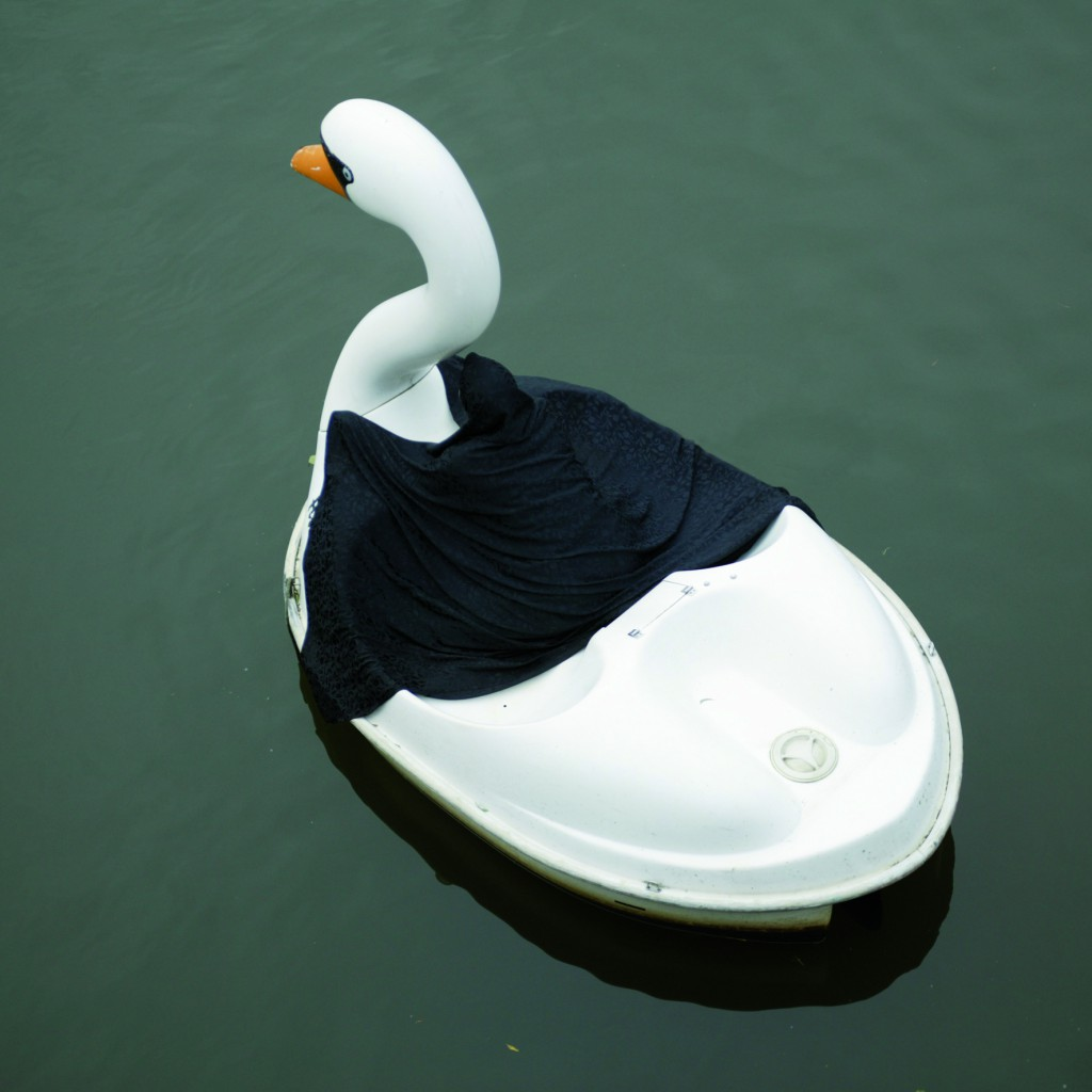 Swanrider IV, 2004, digitalprint on aludibond, 80 x 80cm