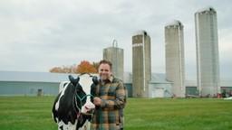 Le lait : essentiel à notre santé?'