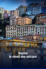 Naples, le réveil des volcans