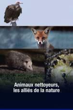 Animaux nettoyeurs, les alliés de la nature
