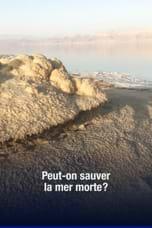 Peut-on sauver la mer Morte?