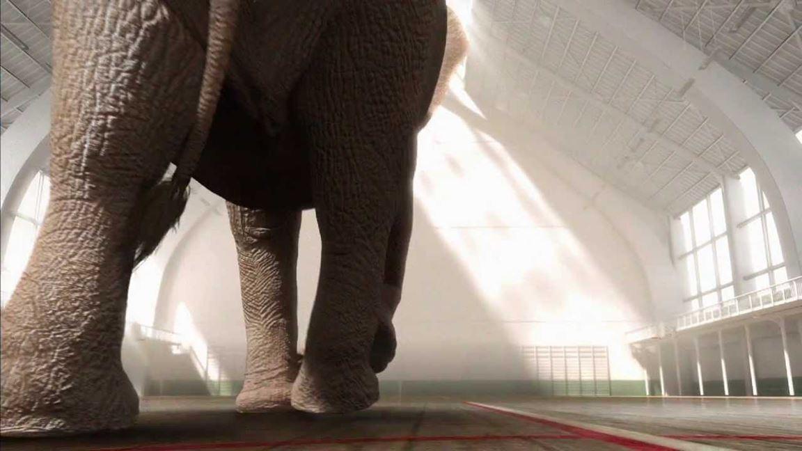 Saviez-vous que les éléphants ne savent pas sauter?