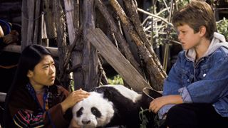 Qui protégera le petit panda?