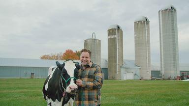 Le lait : essentiel à notre santé?